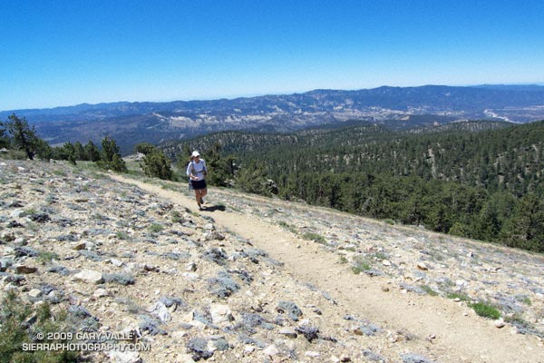 Lynn Longan running up the switchbacks near the Condor Observation Site on Mt. Pinos.