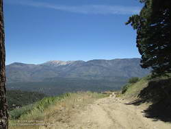 San Gorgonio Mountain from Radford Road.