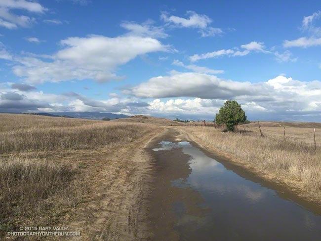 Mud puddles on Lasky Mesa following record rainfall on September 17, 2015.