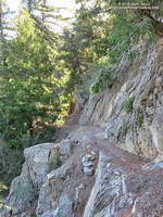 A section of the Rim Trail between Mt. Wilson and Newcomb Pass.
