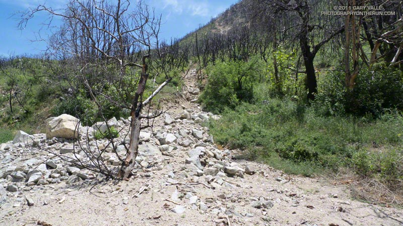 Debris flow in upper Arroyo Seco from a runnel along the Gabrielino Trail above Switzer Picnic Area. May 21, 2011.