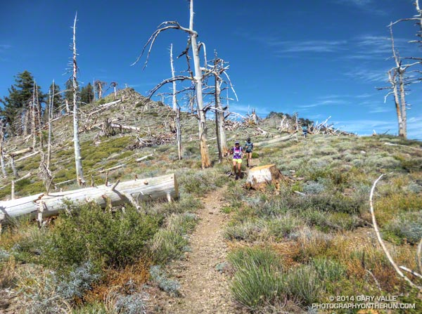 Runners on the PCT west of Mt. Hawkins