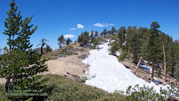 Snow on the Pacific Crest Trail west of Mt. Baden-Powell, May 18, 2008.