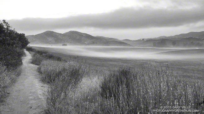 Radiation fog at Satwiwa on the way to Pt. Mugu State Park