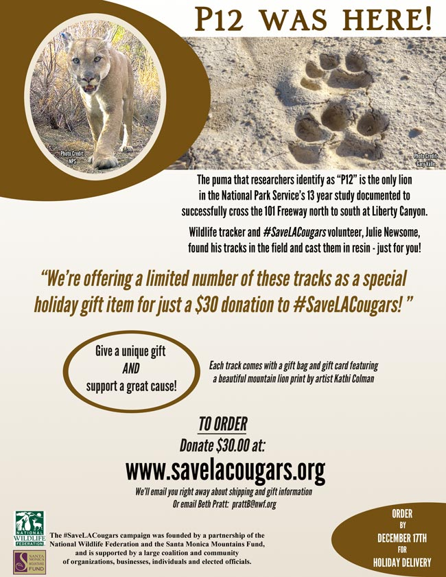 Support #SaveLACougars