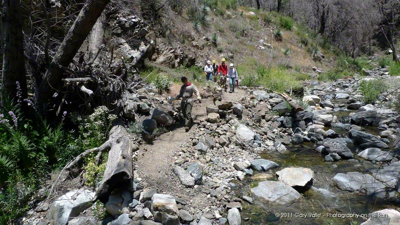 Volunteers returning to West Fork after working on the Silver Moccasin Trail. The flood debris against the trees on the left side of the photo is an indicator of the height of the water here in the flash floods that occurred after the 2009 Station Fire.