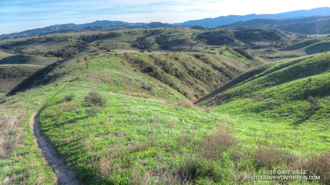 Greening hills of Ahmanson Ranch