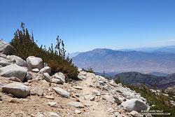 San Jacinto Peak from the Sky High Trail on San Gorgonio Mountain