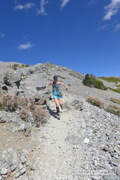 Skye takes flight descending the trail above the Baldy-Harwood saddle.