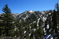 Snow-covered slopes from the Pacific Crest Trail near Little Jimmy Spring. April 2, 2017.
