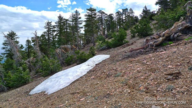 One of a few remaining patches of snow near Mt. Baden-Powell, in the San Gabriel Mountains. July 11, 2010.