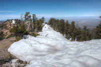 Snow at 9100 feet along the crest just west of Mt. Baden-Powell