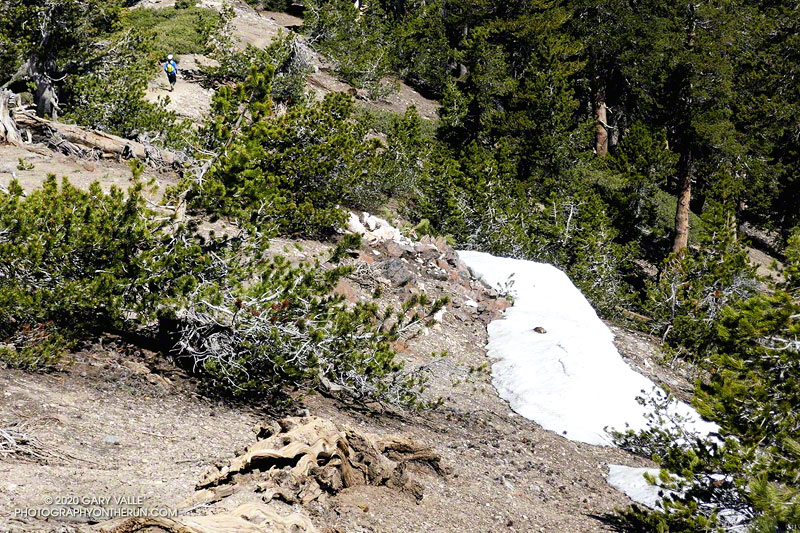 There were a few small patches of snow on the west side of Mt. Baden-Powell. June 20, 2020.