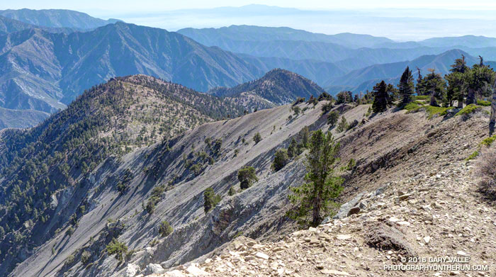 Ross Mountain on South Ridge of Mt. Baden-Powell.