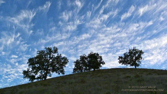 Cirrus, Hill and Trees border=0 src=