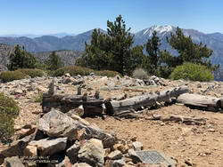 Summit of Throop Peak in the San Gabriel Mountains, near Los Angeles.