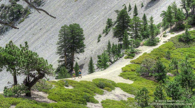 Runners on the trail to Telegraph Peak