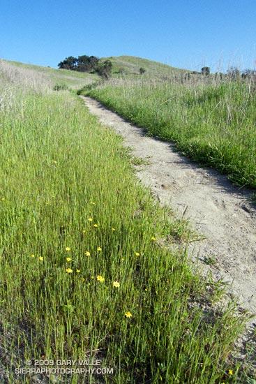Trail leading to Lasky Mesa at Ahmanson Ranch.