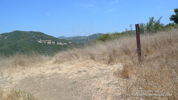 You've just run up the hill to this trail marker. Which way would you turn? The actual trail turns to the LEFT!