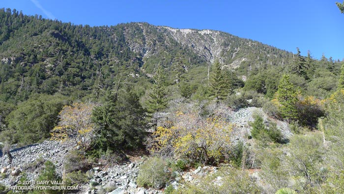 Vincent Gulch and Mt. Baden-Powell about 2.3 miles down the Mine Gulch Trail. The rubble is from debris flows associated with flood events such as occurred in 1938.