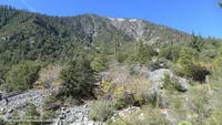 Vincent Gulch and Mt. Baden-Powell from the Mine Gulch Trail.