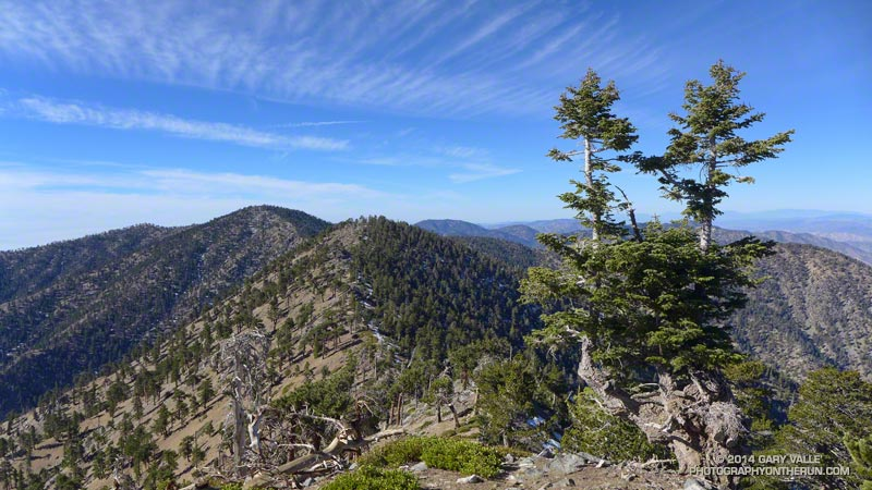 View along the crest to Mt. Burnham and Throop Peak on the way back from Mt. Baden-Powell. The elevation is about 9000'. January 18, 2014.