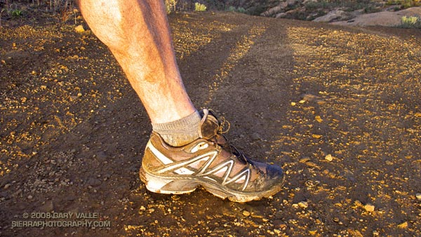 Salomon XT Wings Trail Running Shoe