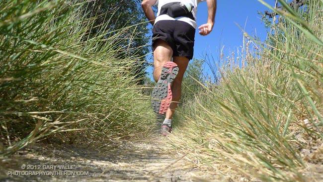 Salomon XT Wings 3 Trail Running Shoe