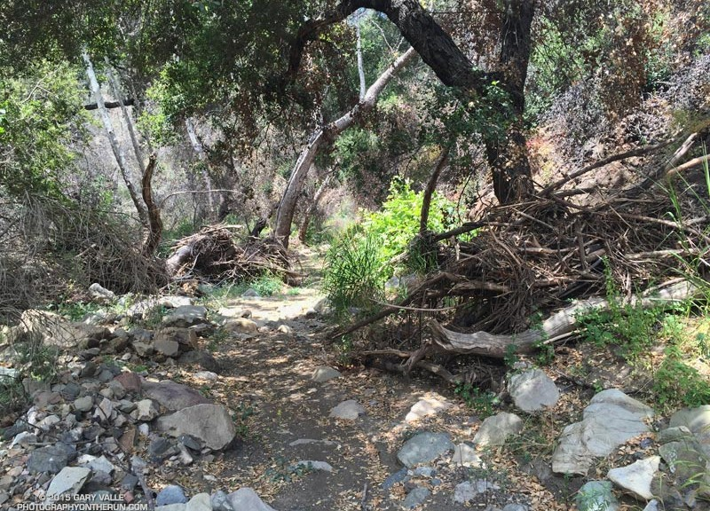 Flash flood debris along the Serrano Canyon Trail